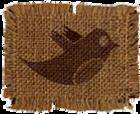 EcoChamber Twitter