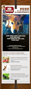 Dog boarding and dog day care newsletter
