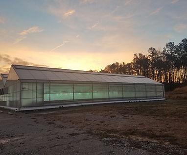 S.O  Greenhouse