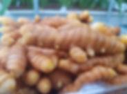 SFP Turmeric up close.jpg
