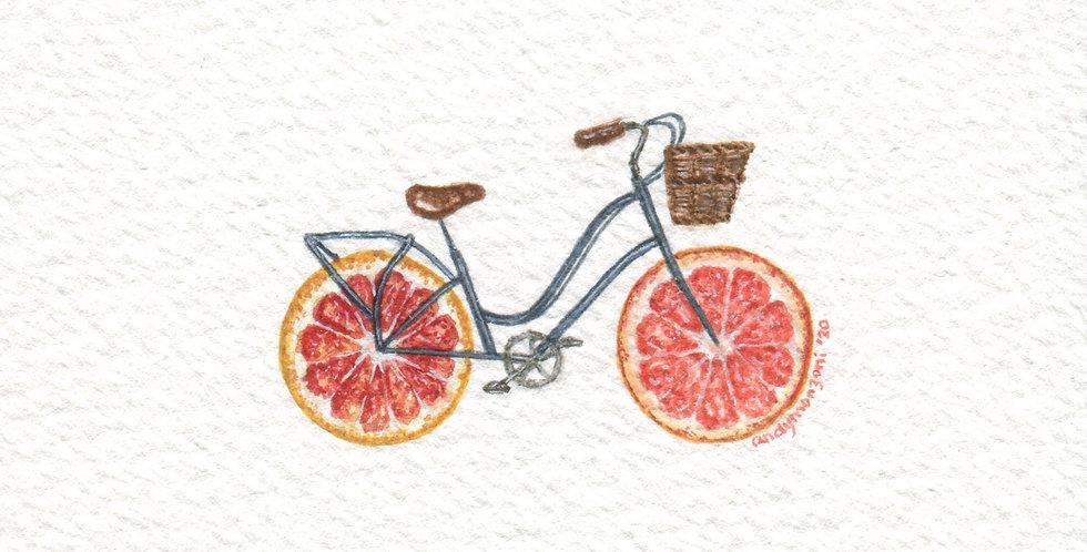 ORIGINAL Citrus Bike