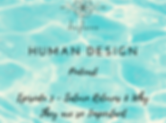 HUMAN DESIGN (6).png