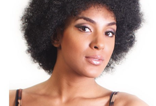 Aftress Syn Afro Wig
