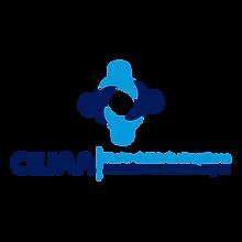 logo CEJAA.png
