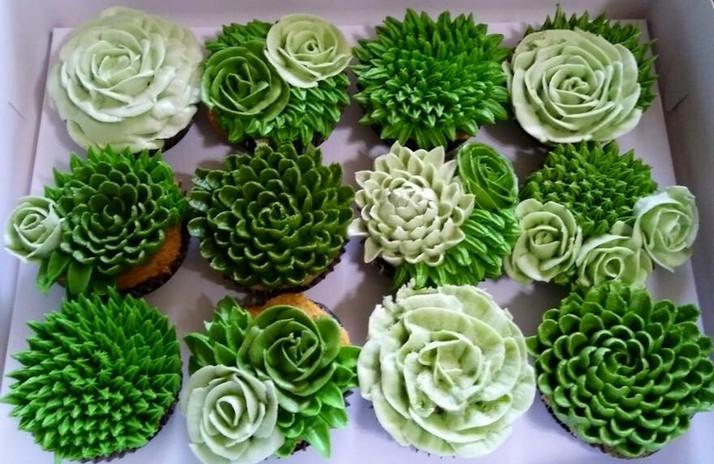 cupcake succulents.jpg