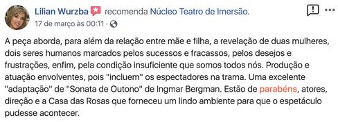 Comentario de Lilian Wurzba.png