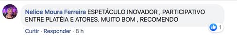 Comentario de Nelice Ferreira recortado.