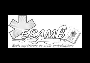 ESAMB.png