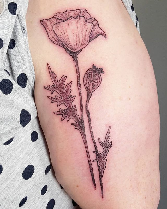 Poppy flower for Angie! Thank youuu! 🌺🌿 #poppytattoo #poppyflower #dotwork #linework #tattoo #tatt