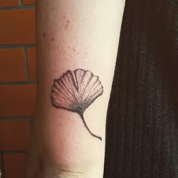 Ein kleines #ginkoblatt für die liebe Rosalie! #kaattoo #kaattoo_tattoo #tattoo #dotwork #ginkotatto