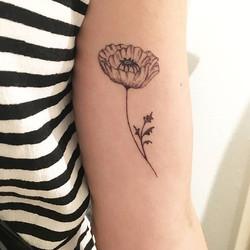 Charlottes healed #dotwork #poppy #tattoo 💮 #kaattoo