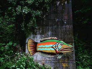 Street art – graffiti en live