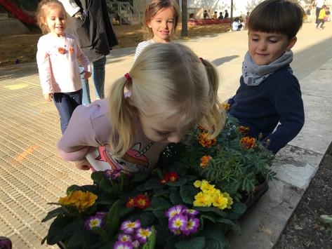 Els Cargols i les Formigues treballen les seves jardineres!