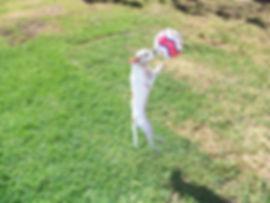 stellakissball.jpg