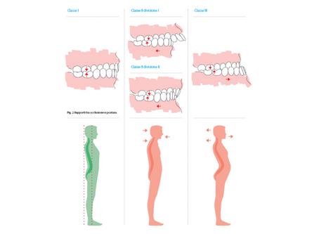 Osteopatia e Occlusione