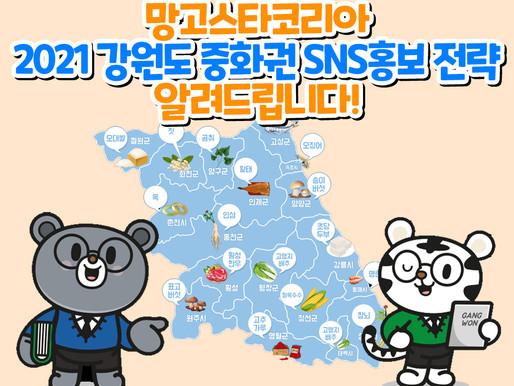 [망고스타코리아] 2021 강원도 중화권 SNS 홍보 전략 알려드립니다!