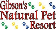 Lodging, Daycare, Grooming, Training, Retail