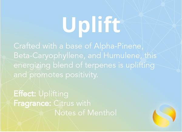 Uplift Mobile 1.2-01.png