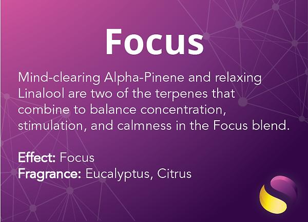 Focus Mobile 1.2-01.png