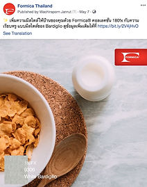Formica Thailand Post