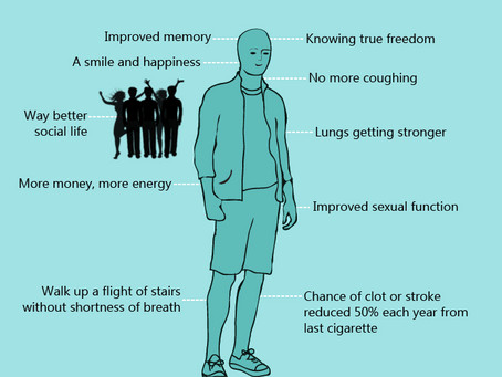 The Anatomy of a New Non-Smoker