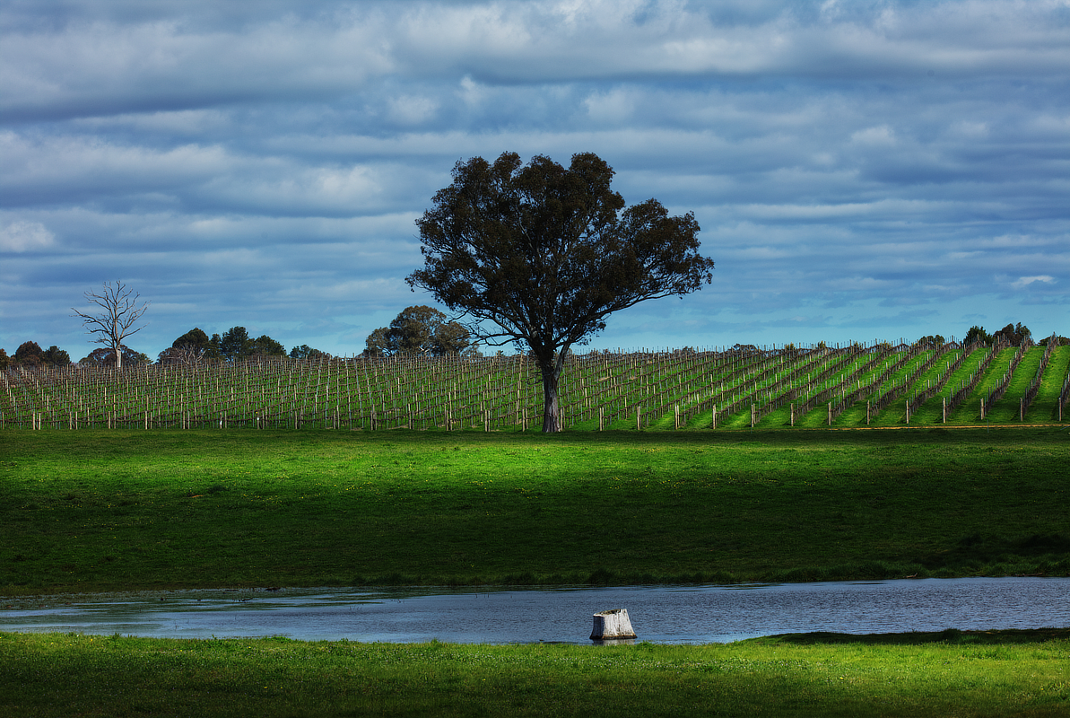 paulzabphoto_Outback NSW_Sept 2020_Yass_