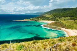 Royal National Park by Paul Zabodal