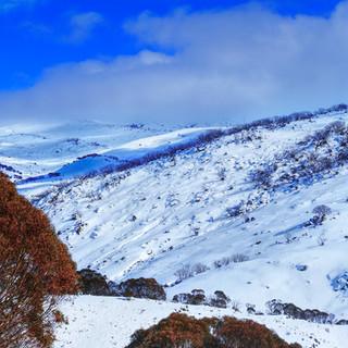 paulzabphoto_Guthega Snowy Mountains