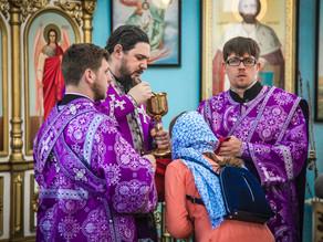 Епископ Ахтубинский и Енотаевский Антоний совершил Божественную литургию в храме Александра Невского