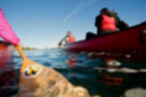 Canoe tour.jpg