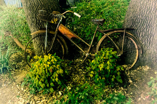 Old bikes never die, they just lean away.