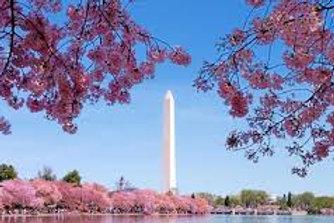May 18-21, 2021 Washington DC