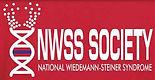 nwsss logo.jpg