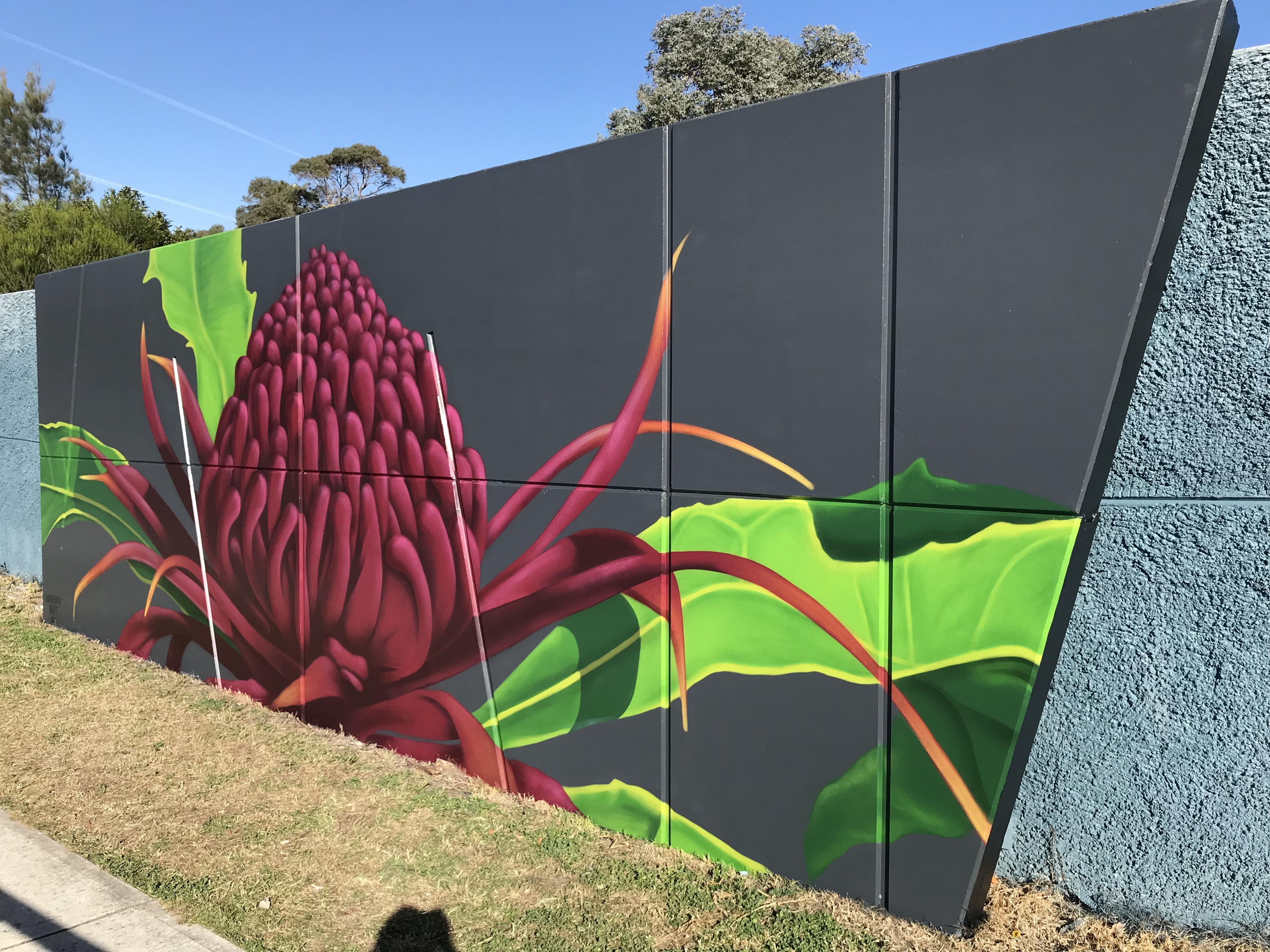 Australian Waratah flower mural art