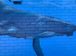 Whale mural art by Urban Art