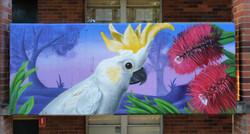 Australian graffiti mural at school