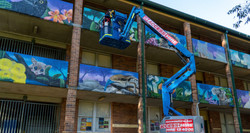 Wild life school playground murals