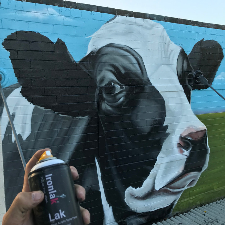 HOW MURAL ART BENEFITS THE COMMUNITY.