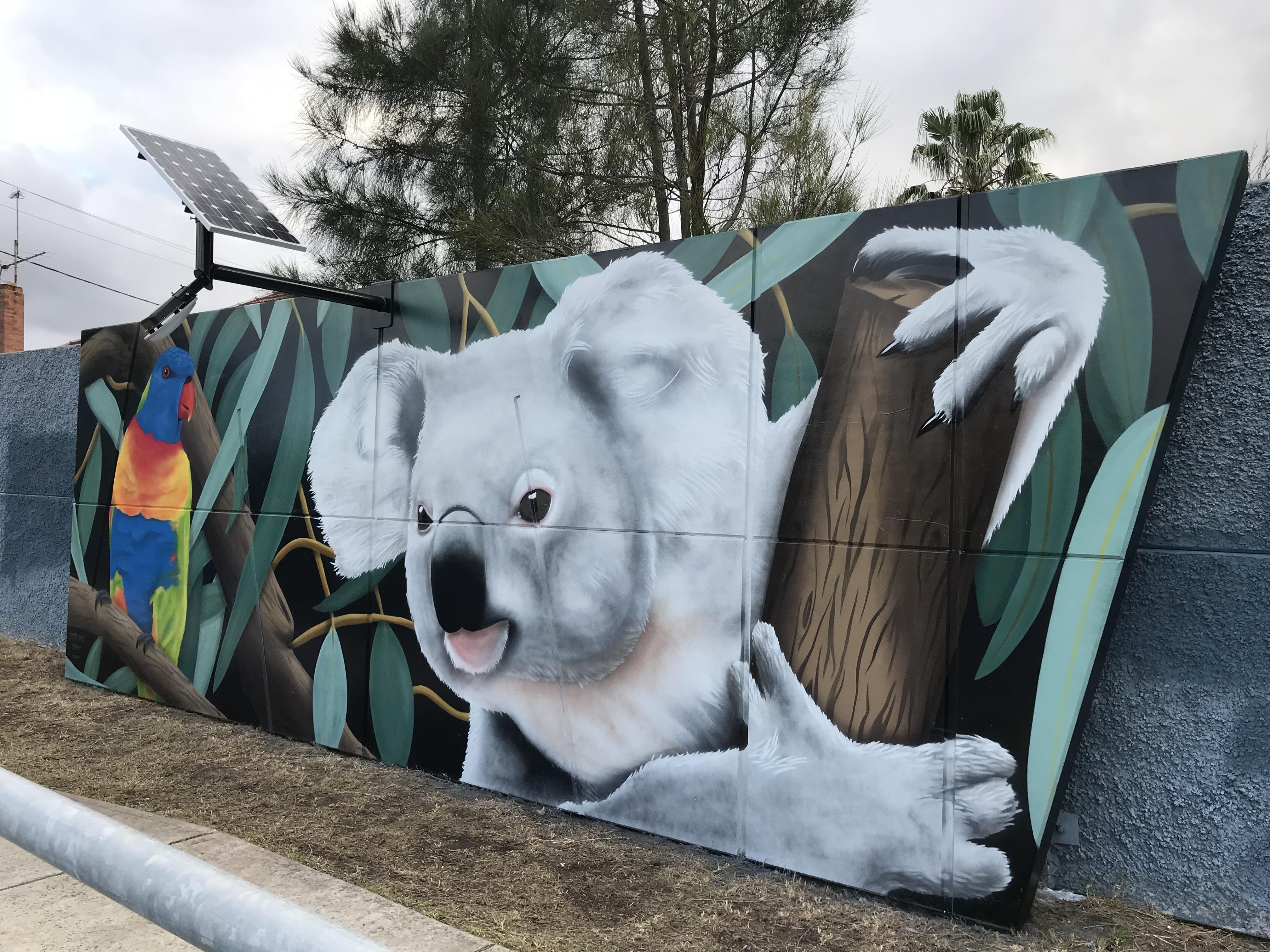Australian Koala street art mural