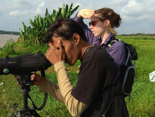 2 Days Birding Tours in Jogja