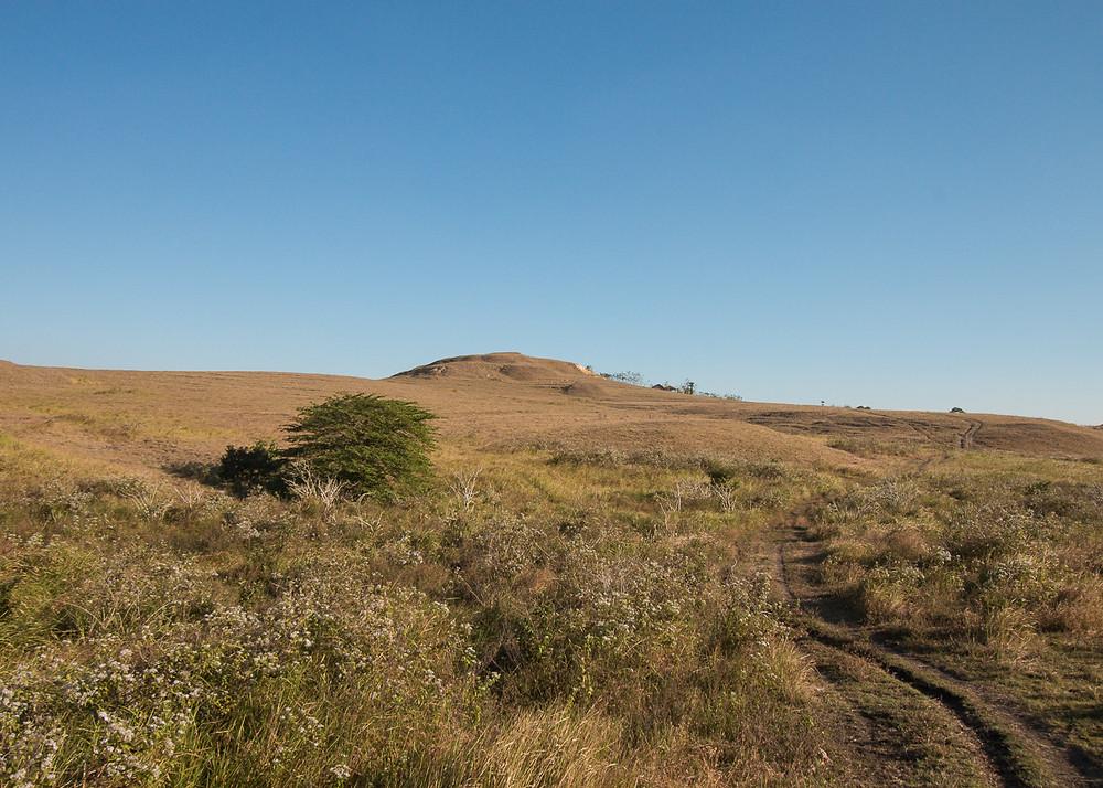 Vast grassland of Sumba island