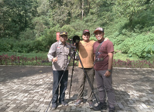 Trip Report & Testimonial of Birding in Malang