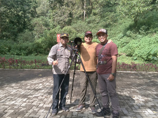 Trip Report & Testimonial of Birding in Malang