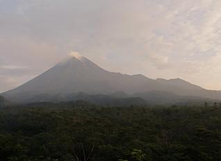 Birding in Gunung Merapi National Park