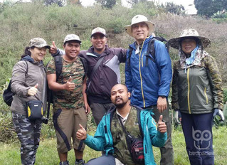 East Java Bird Photography Trip Report August 2017