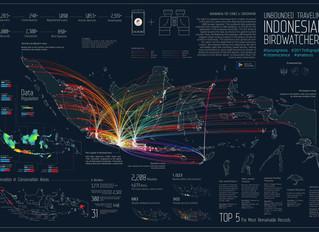 Infographic of Burungnesia during 2017