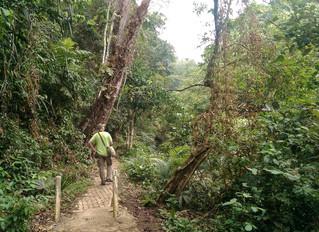 Woodpeckers Trip Report September 2017
