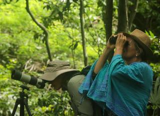 One-day Birding Trips in Baluran National Park