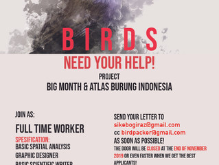 Open Recruitment Burungnesia Team