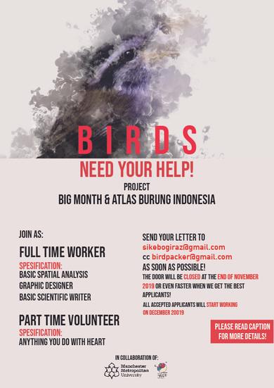 Open Recruitment Burungnesia Team